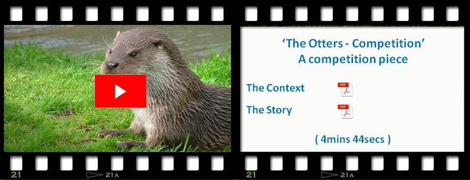 The Otters Competition